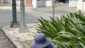 1,290 beggars, vagrants, homeless people gathered at social welfare facilities