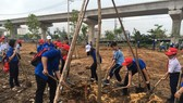 Các đoàn viên, thanh niên tham gia trồng cây