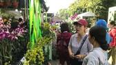 Trong những năm gần đây, lan đã trở thành sản phẩm chủ lực của nông nghiệp thành phố