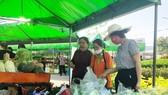 Chợ phiên nông sản an toàn quận Tân Phú được tổ chức định kỳ vào thứ 6 hàng tuần