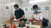 Trái cây tươi Việt Nam chuẩn bị tiếp tục xuất khẩu sang Hoa Kỳ