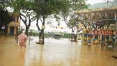 Quảng Ngãi: Mưa lớn làm thiệt hại nhiều diện tích rau màu, hơn 1.060 căn nhà bị ngập