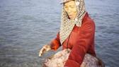 Ngư dân Quảng Ngãi trúng đậm ruốc biển cuối năm