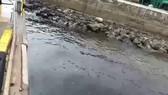 Nước thải màu đen xả ra biển xuất phát từ Công ty TNHH MTV Hào Hưng Quảng Ngãi. Ảnh cắt từ clip