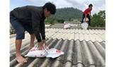 Các doanh nghiệp ở Quảng Ngãi xem xét cho người lao động tạm thời nghỉ việc từ ngày 28 đến 29-10