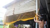 Quảng Ngãi: Giăng lưới, cột dây chằng chống nhà cửa ứng phó bão số 10