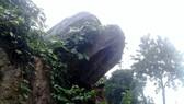 Quảng Ngãi 300 người dân di dời vì vết nứt núi sạt lở kéo dài