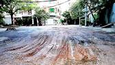 Tan nát đường vào khu Đồng Diều