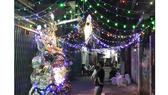 Mùa Giáng sinh ấm áp ở xóm đạo