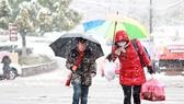 Tuyết rơi dày làm tăng giá rau quả ở Trung Quốc