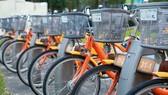 Sự cần thiết của xe đạp công cộng