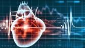 Rối loạn nhịp tim: Chớ xem thường