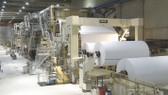 Ngành giấy và bao bì tăng trưởng bình quân 15%/năm