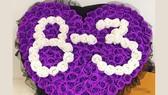 Tất cả là hoa hồng chào mừng 8-3