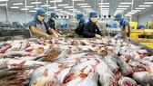 Xuất khẩu thủy sản sụt giảm hơn 35%