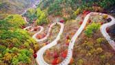 Du lịch Hàn Quốc kỳ vọng sẽ đón khách trở lại vào cuối năm 2020