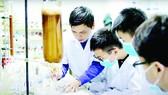 Tại phòng thí nghiệm của Viện Hóa sinh biển - Viện Hàn lâm Khoa học và Công nghệ Việt Nam, Tiến sĩ Lê Nguyễn Thành hướng dẫn nhóm Tử Minh thực hiện dự án về keo ong dú