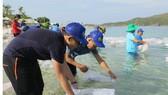 Thả 330.000 con giống tái tạo nguồn lợi thủy sản