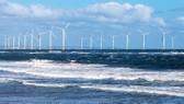 Tranh cãi lộ trình loại bỏ năng lượng hóa thạch của IEA