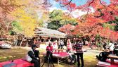Cảnh sắc mùa thu Nhật Bản