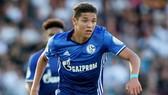 Tân binh Amine Harit có thể khởi đầu ở Bundesliga dưới màu áo của Schalke.