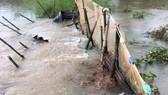 Triều cường tiếp tục gây vỡ đê cặp sông Hậu