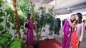 VIDEO: Du khách thăm vườn rau, hoa công nghệ cao giữa phố Đà Lạt