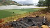 Hồ cấp nước sinh hoạt cho Đà Lạt ngày càng ô nhiễm