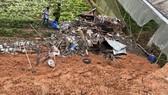 Đà Lạt: Trú mưa trong chòi, 4 người bị đất vùi lấp