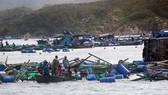 Người dân Khánh Hòa gánh chịu thiệt hại nặng nề do bão số 12 gây ra