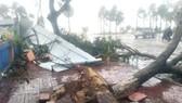 """Biển Đông đối mặt với """"cơn bão khủng"""" Mangkhut"""