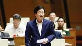Phó Thủ tướng Trịnh Đình Dũng trả lời chất vấn chiều 6-11. Ảnh: VIẾT CHUNG