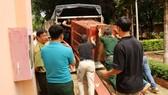 Đưa cá thể gấu nuôi nhốt cuối cùng ở tỉnh Gia Lai về Tam Đảo