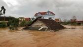 Phó Thủ tướng Trịnh Đình Dũng yêu cầu các bộ, ngành, địa phương phối hợp hạn chế ngập lụt