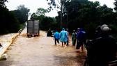 Hơn 52.000ha lúa chưa kịp thu hoạch trước bão số 12