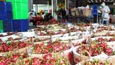 Hàng hóa Việt Nam xuất khẩu không có virus SARS-CoV-2