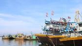 Ninh Thuận và Bình Thuận nghiêm cấm tàu thuyền ra khơi