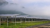 The largest solar power plant in An Giang province was inaugurated on July 6 (Photo: SGGP)