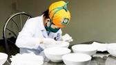 Công đoạn sau thu hoạch, làm sạch tổ yến tại Trung tâm Chế biến yến sào Việt Linh (huyện Cần Giờ)                Ảnh: PHIÊU NHIÊN