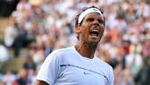 Rafael Nadal có cơ hội cướp ngôi số 1 của Roger Federer.