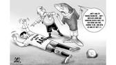 Cá mập và cáp quang