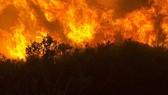 Cháy rừng lan rộng ở California, 7 người chết