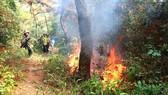 Lực lượng chữa cháy rừng bằng dụng cụ thô sơ