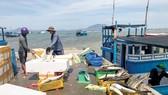 Hiện nay, nhiều tàu cá đánh bắt gần bờ thường không có ghi chép nhật ký, truy xuất nguồn gốc sản phẩm đánh bắt