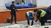Tây Ban Nha thu giữ 4 tấn cocaine