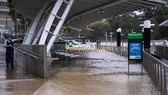 Cảnh ngập lụt sau mưa lớn tại cảng Parramatta ở Sydney, Australia, ngày 20-3-2021. Ảnh: THX/TTXVN