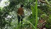 Truy vết người đàn ông chết trong thế treo cổ ở công viên Thành Công, dương tính SARS-CoV-2