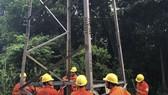 Trụ điện cao thế 110kV bị mất nhiều thanh giằng thép