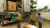 Chiếc xe container vận chuyển nầm heo trái phép bị bắt giữ
