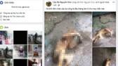 Hình ảnh cá thể động vật hoang dã nghi khỉ bị giết hại đã được đăng tải lên Facebook. Ảnh chụp lại từ màn hình